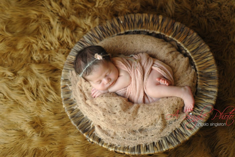 newborn girl posed