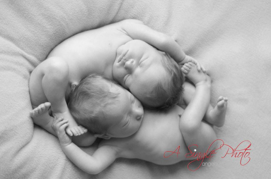 Twin baby photos in Maryland