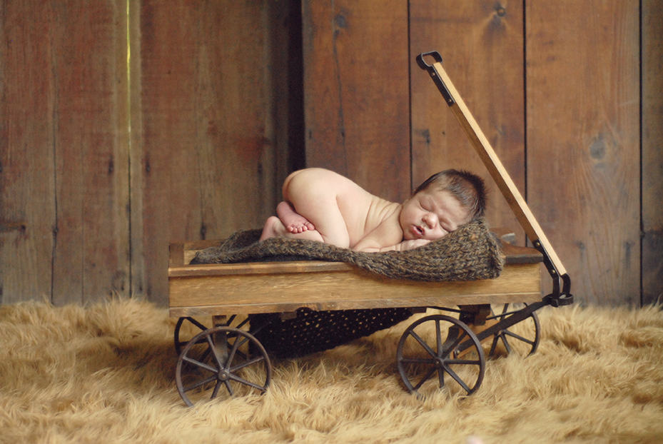 newborn baby boy in wagon
